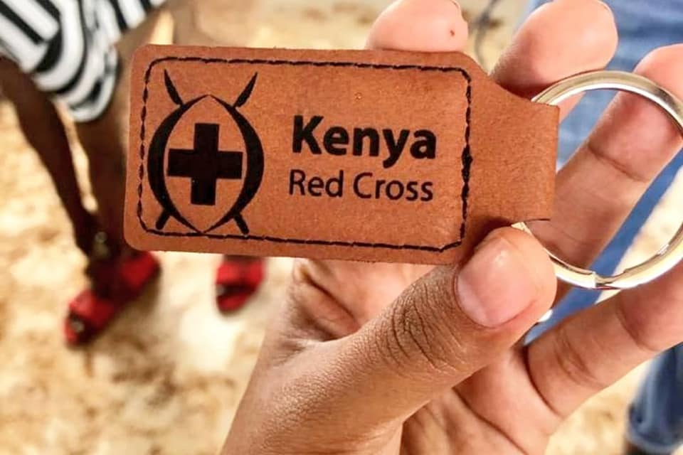 The Kenya Red Cross Implementing a 9-Month COVID Recovery Program Using Sarafu Blockchain Currencies